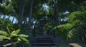 Jungle LVL22